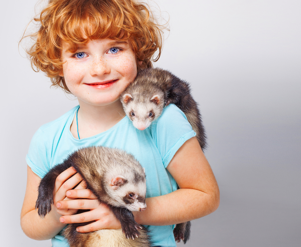 kids night out pawsitively pets